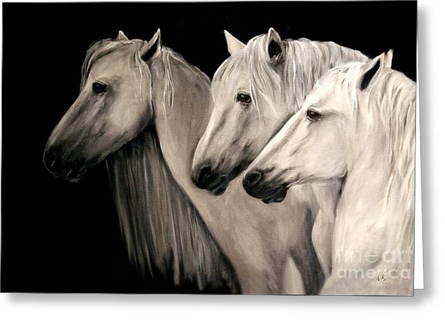 Three White Horses Greeting Card by Nancy Bradley