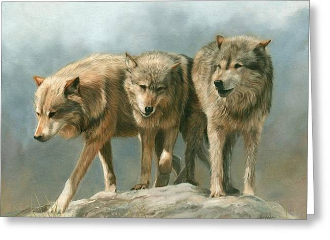 Three Wolves Greeting Card by David Stribbling