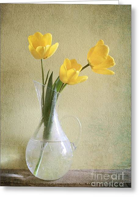 Three Yellow Tulips Greeting Card by Diana Kraleva