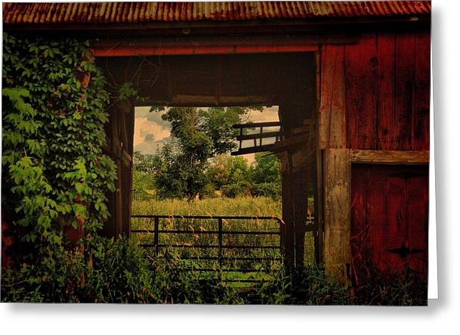 Through The Barn Door Greeting Card