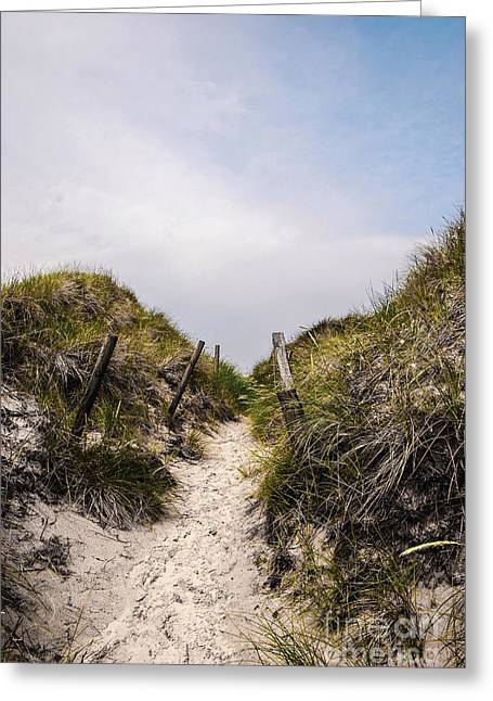 Through The Dunes Greeting Card