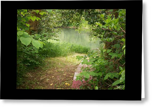 Greeting Card featuring the photograph Through The Forest At Water's Edge by Absinthe Art By Michelle LeAnn Scott