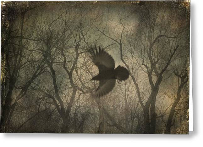 Through The Forest Greeting Card by Gothicrow Images