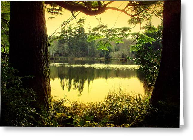 Through The Forest To The Lake Two Greeting Card