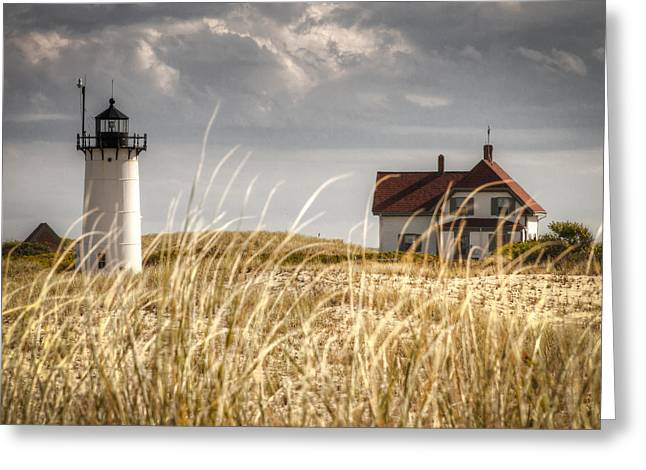 Race Point Light Through The Grass Greeting Card by Brian Caldwell