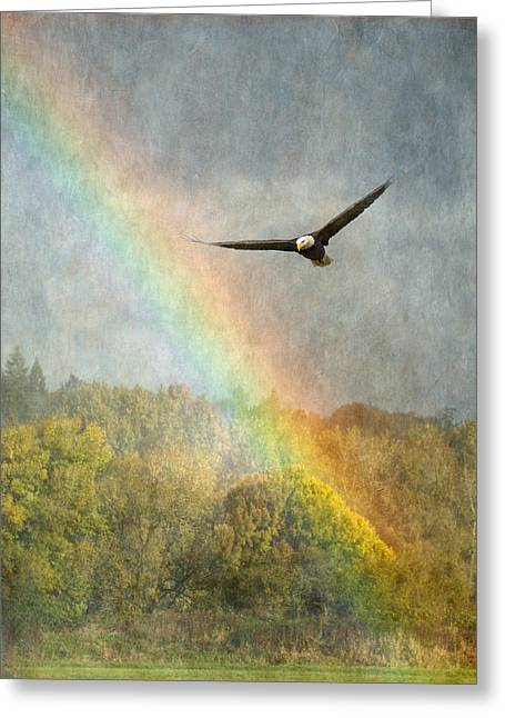 Through The Rainbow Greeting Card by Angie Vogel