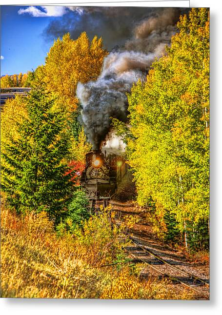 Through The Trees Greeting Card by Tom Weisbrook