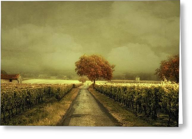 Through The Vineyard Greeting Card