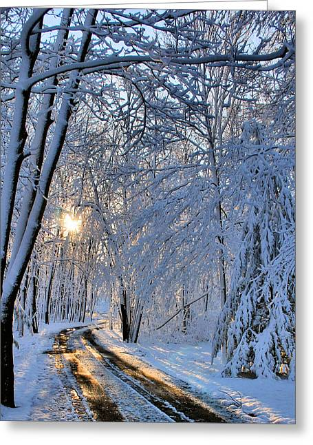 Through The Woods Greeting Card by Kristin Elmquist