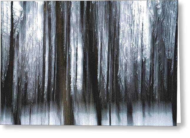 Greeting Card featuring the photograph Through The Woods by Steven Huszar
