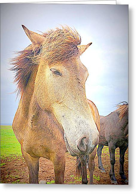 I Am Throwing My Hair In The Wind Greeting Card by Hilde Widerberg