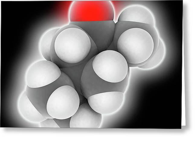 Thujone Molecule Greeting Card by Laguna Design
