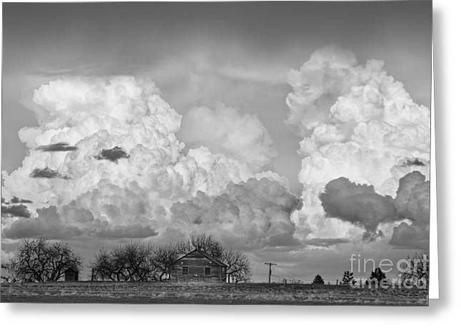 Thunderstorm Clouds And The Little House On The Prarie Bw Greeting Card by James BO  Insogna