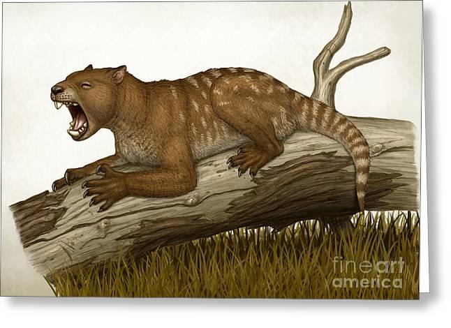 Thylacoleo Carnifex, A Marsupial Greeting Card by Heraldo Mussolini