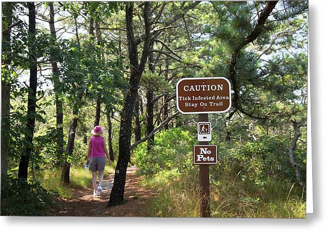 Tick Warning Sign On Hiking Trail Greeting Card