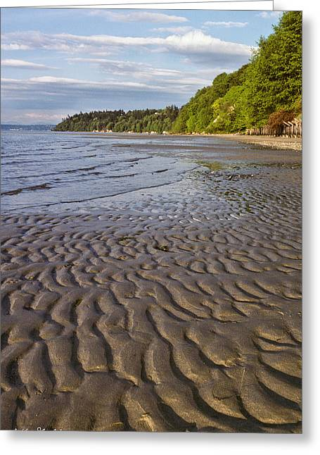 Greeting Card featuring the photograph Tidal Pattern In The Sand by Jeff Goulden