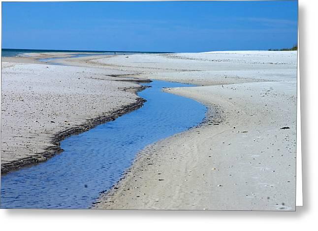 Tidal Pools Greeting Card by Susan Leggett