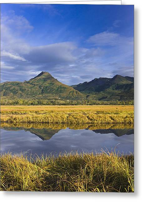 Tidal Slough And Mountain Scenic Along Greeting Card by Kevin Smith