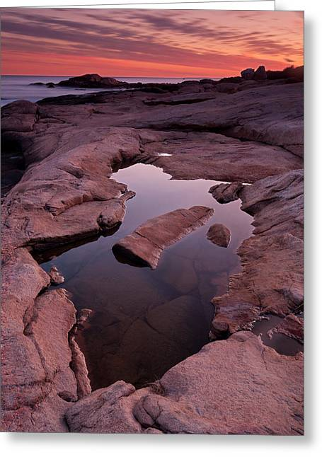 Tide Pool Geometry Greeting Card by Michael Blanchette