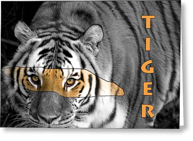 Tiger D7878 Greeting Card by Wes and Dotty Weber
