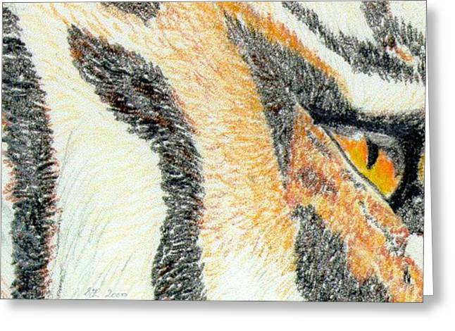 Greeting Card featuring the drawing Tiger Amber by Stephanie Grant