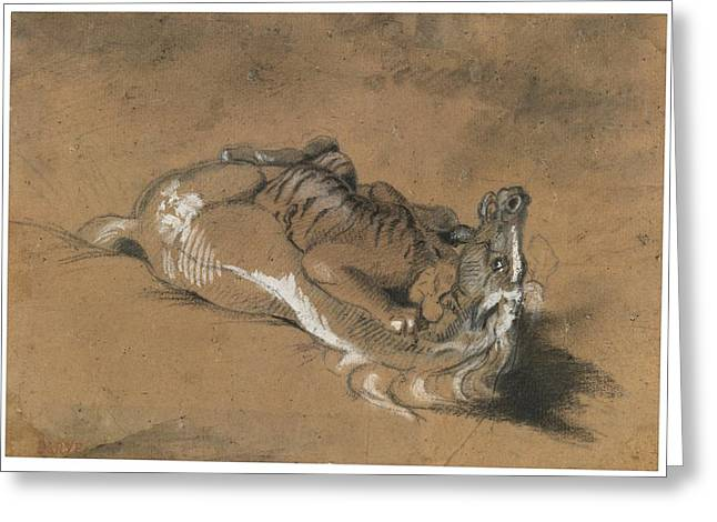 Tiger Attacking A Horse Greeting Card by Celestial Images