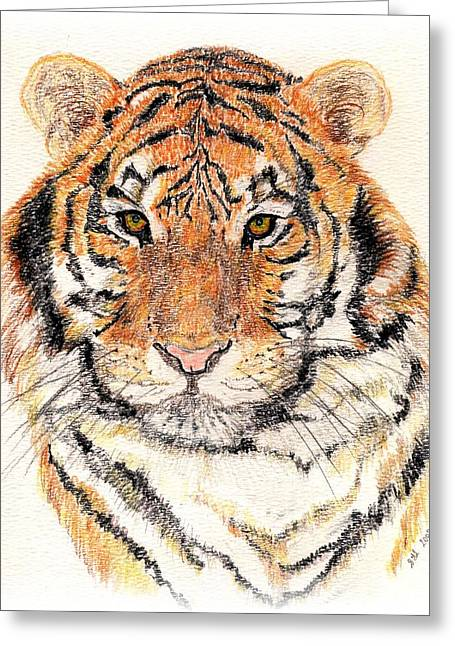 Greeting Card featuring the drawing Tiger Bright by Stephanie Grant
