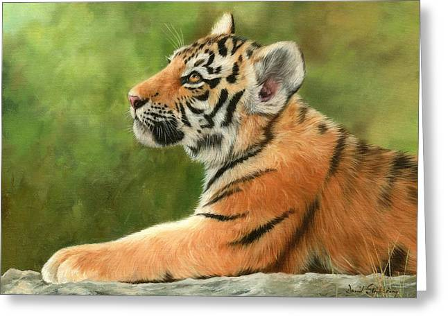 Tiger Cub Greeting Card by David Stribbling