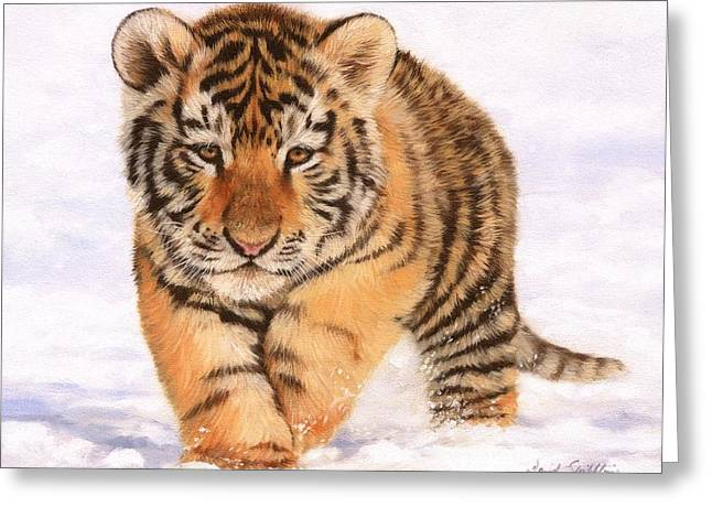 Tiger Cub In Snow Painting Greeting Card by David Stribbling