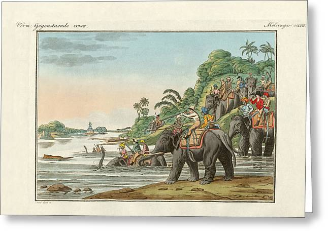 Tiger Hunting On An Indian River Greeting Card by Splendid Art Prints