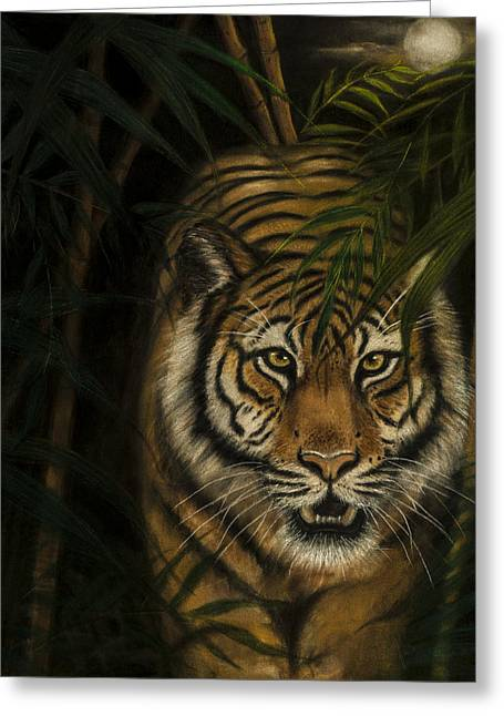 Tiger In The Dark Greeting Card