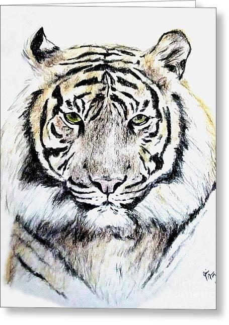 Tiger Portrait Greeting Card by Jim Fitzpatrick