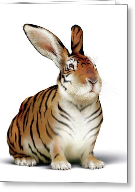Tiger-rabbit Greeting Card