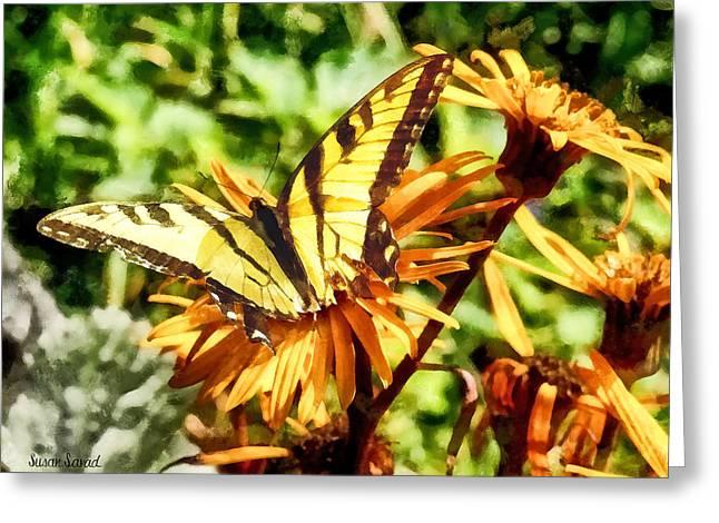 Tiger Swallowtail On Yellow Wildflower Greeting Card by Susan Savad