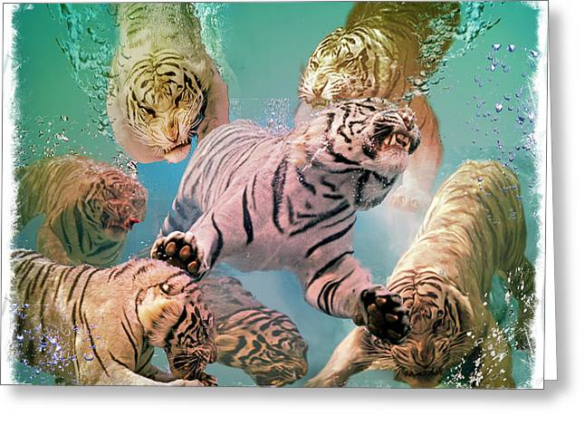 Tiger Tank Greeting Card