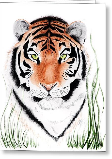 Tiger Tiger Where Greeting Card
