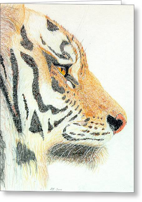 Greeting Card featuring the drawing Tiger's Head by Stephanie Grant