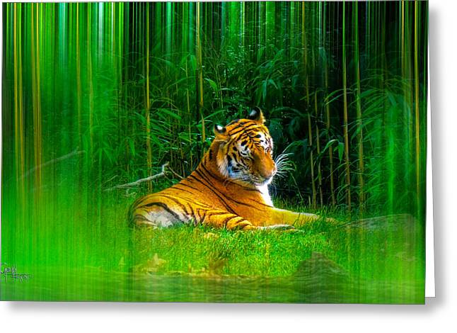 Tigers Misty Lair Greeting Card by Glenn Feron