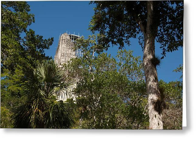 Tikal Pyramid 4a Greeting Card