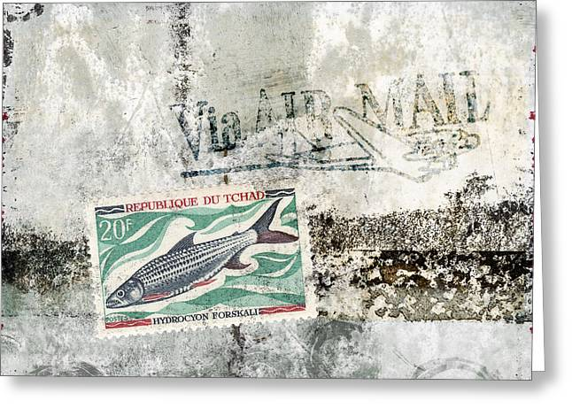 Tilapia Air Mail Greeting Card by Carol Leigh