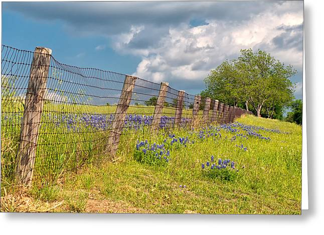 Tilted Fence Greeting Card