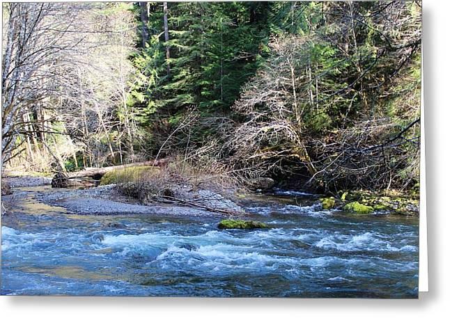 Tim Rice Salmon Creek  Greeting Card