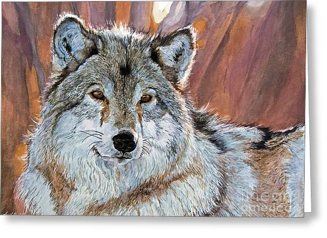 Timber Wolf Greeting Card by David Lloyd Glover