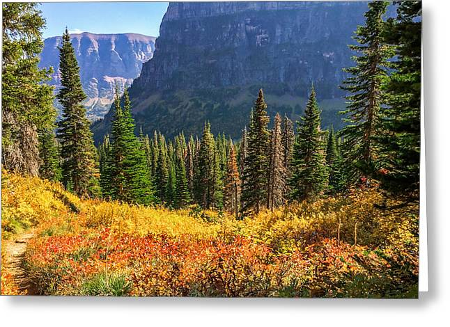 Timeless Colors Of Nature Greeting Card by Rohit Nair
