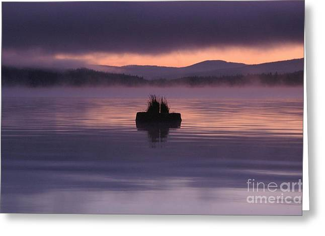 Timothy Lake Serenity Greeting Card