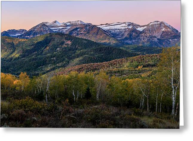 Timp First Light Greeting Card