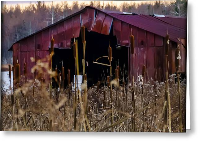 Tin Roof Rusted Greeting Card