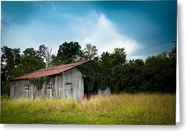 Tin Roof...ivy Covered Barn Greeting Card by Shane Holsclaw