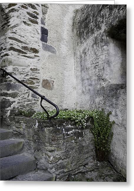 Tiny Corner Garden At Marksburg Castle Greeting Card by Teresa Mucha
