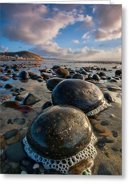 Tiny Giants Greeting Card by Peter Tellone